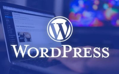 WordPress 5.6: Wat is er nieuw?